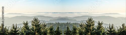 Fototapeta Amazing fog landscape in black forest panorama banner long obraz