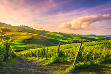 Langhe Vineyards View, Barolo ...