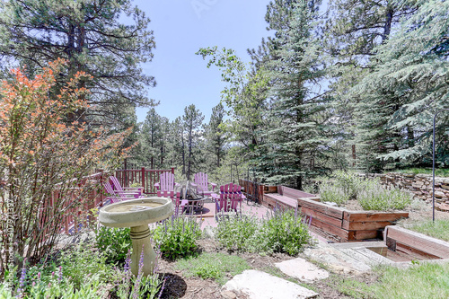 Mountain backyard paved seating area with birdbath, xeriscape plants, and pine t Wallpaper Mural