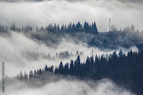 Foto auf AluDibond Morgen mit Nebel The view from the heights of the mountains and forests covered by fog