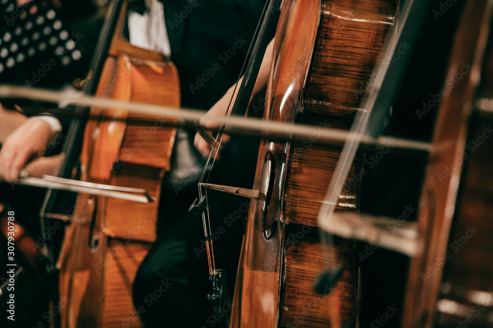 Symphony orchestra on stage, hands playing cello <span>plik: #307930788 | autor: DeshaCAM</span>