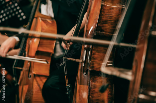 Symphony orchestra on stage, hands playing cello Fototapet