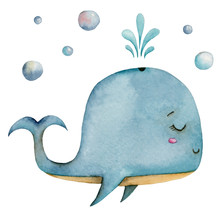 Watercolor Cute Blue Whale With Water Fountain And Air Bubbles Isolated On A White Background.