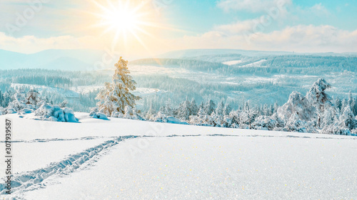 Printed kitchen splashbacks Light blue Stunning panorama of snowy landscape in winter in Black Forest - winter wonderland