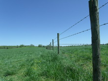 Perspective View Down A Barbed Wire Fence Line