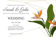 Wedding Invitation With Strelitzia  Flowers. Vector Watercolor.  Vector Illustration.