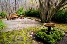 Forgotten Garden