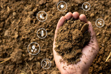 Dung Or Manure With Technology...