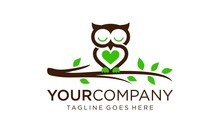 Creative Owl For Logo Design Concept