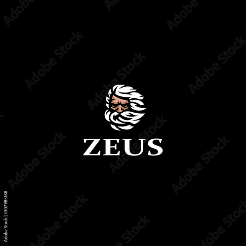Greek god Zeus. Wallpaper Mural