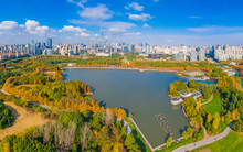 Aerial Aerial Photographof Of The New Century Park In Pudong New Area, Shanghai, China