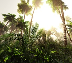 Panel Szklany 3D Jungle in the morning in the fog, palm trees in the haze. 3d rendering.