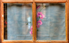 Fenêtre Rustique à Sai