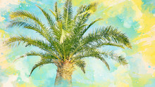 Watercolor Pattern Of Palm Tre...