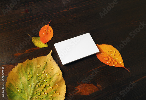 Cuadros en Lienzo  Photo of blank white paper business card and autumn leaves on wooden background
