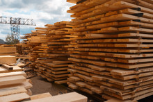 Stacks Of Boards On Timber Mil...