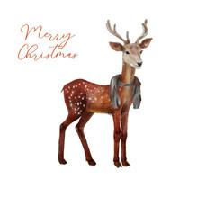 Watercolor Deer In Scarf On Wh...