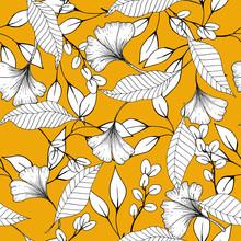 Botanical Vector Illustration ...