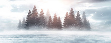 Winter Abstract Landscape. Sunlight In The Winter Forest.