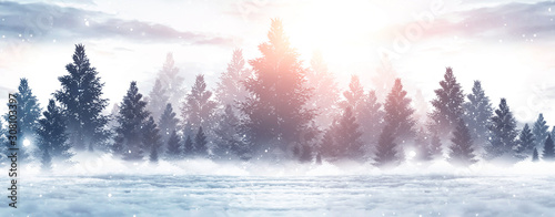 Winter abstract landscape. Sunlight in the winter forest. Fototapete