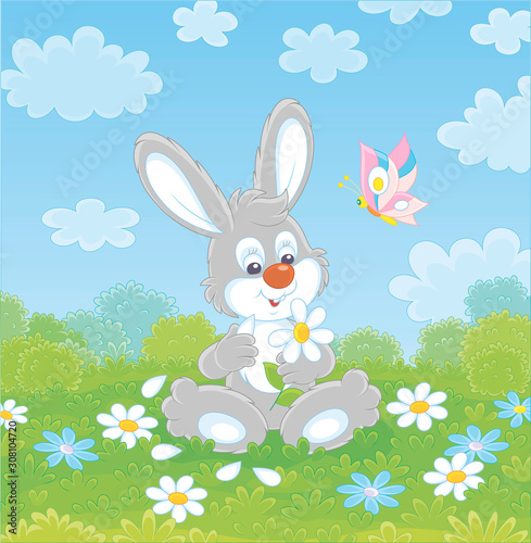 Photo Loving little grey bunny and a colorful butterfly dreaming and telling fortunes