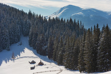 Beautiful Winter In Carpathian...