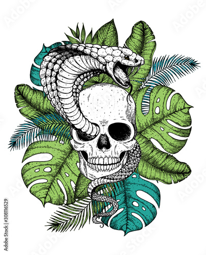 Skull Cobra Snake And Palm Leaves Hand Drawn Illustration Tattoo Vintage Print Hand Drawn Floral Print Tattoo Design Jungle Print Tropical Illustration Buy This Stock Vector And Explore Similar Vectors At Alibaba.com offers 1,068 tattoo leaf products. hand drawn floral print tattoo design