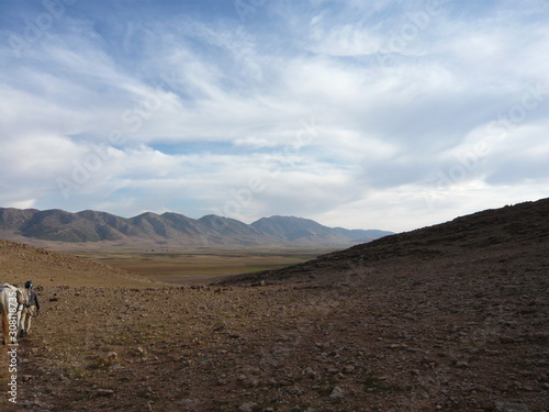 Obraz na plátně Walking with horse over fieldstone plain toward distant Atlas Mountains Morocco