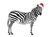Graphical Zebra In Santa Claus...