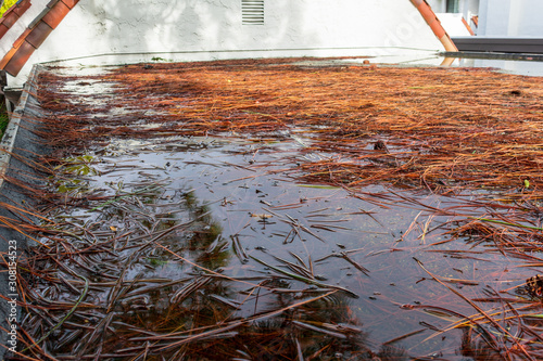 Fototapeta Ponding water on flat roof covered with tree debris after heavy rain obraz