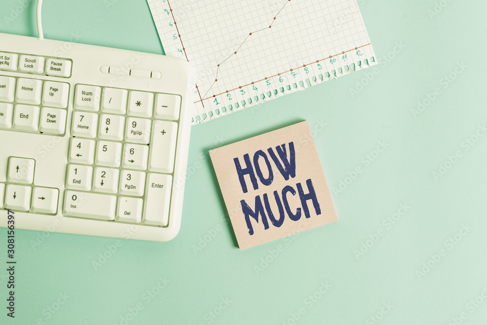 Fototapeta Conceptual hand writing showing How Much. Concept meaning ask about the amount or cost of something What amount or price Paper blue keyboard office study notebook chart numbers memo