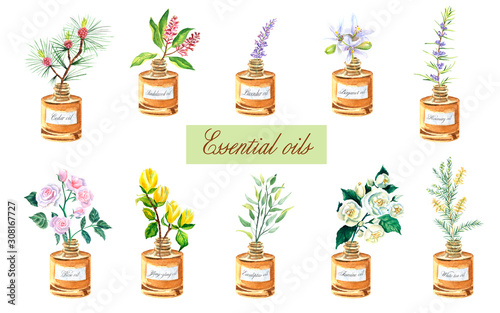 Fotografie, Tablou Watercolor set with bottles of essential oils: aroma herbs in small bottles
