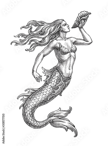 Hand drawn illustration in the engraving style, sea mermaid with a shell Fototapeta
