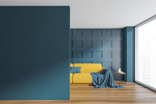Dark Blue Living Room With Yel...