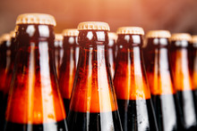 Brown Glass Beer Drink Alcohol Bottles, Brewery Conveyor, Production Line