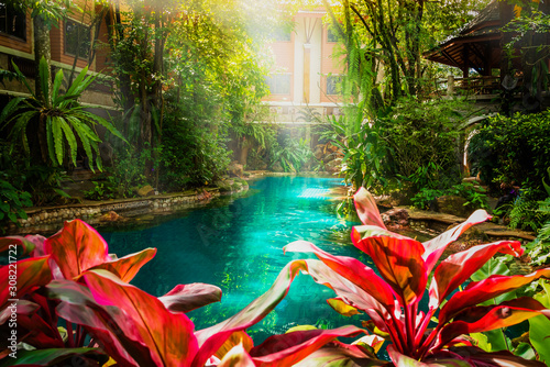Fototapeta Swimming pool in beautiful nature jungle style under trees and house background at sunshine time, Poolside in natural green garden resort villa obraz