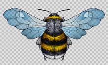 Honey Bee Tattoo.Illustration On Transparent