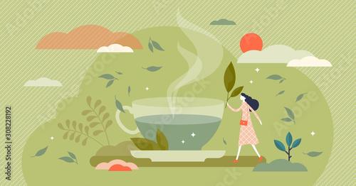 Fototapeta Green tea vector illustration. Herbal drink in flat tiny persons concept. obraz