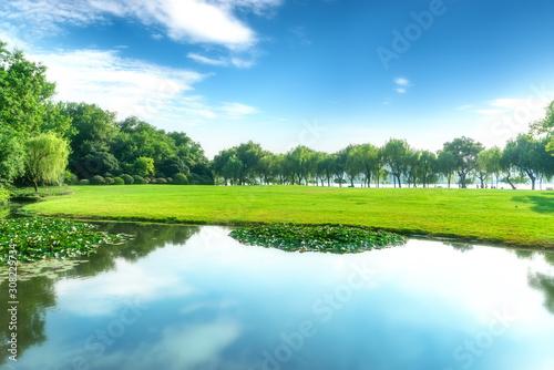 Fototapeta Park, lake, grassland and forest.. obraz na płótnie