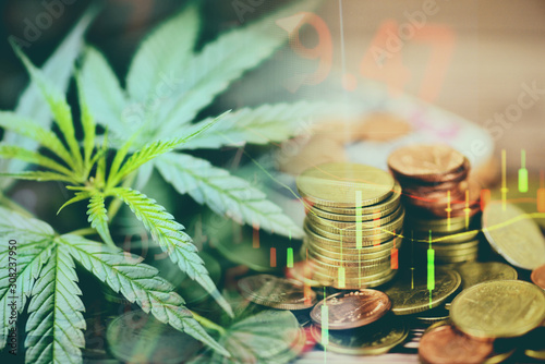 Business cannabis marijuana stock exchange market graph business / cannabis leaves on trading and investment of financial money price stock chart exchange growth and crisis money gold coin