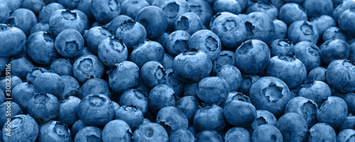 Carta da parati Close up background of blue toned fresh blueberry