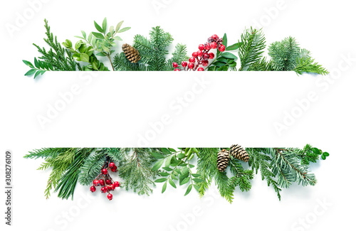 Flat lay composition with winter fir branches, cones, holly isolated on white background - 308276109