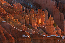 Winter Landscape Shortly After Sunrise Of The Hoodoos Of Bryce Canyon National Park, Utah