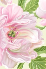 Panel Szklany Peonie A bunch of sweet pink blooming Peony flower and green leaves, digital hand draw and paint the image.