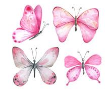 Watercolor Butterflies In Pin...