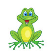 Funny smiling frog in cartoon style sits isolated on white background.  Vector illustration.