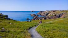 Cape Bonavista, Newfoundland R...