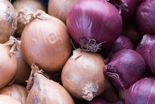 Lot Of Onions In Two Colors