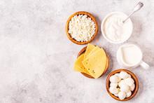 Probiotics Fermented Dairy Pro...
