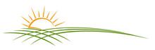 Sun Dawn Symbol With Wheat Fie...